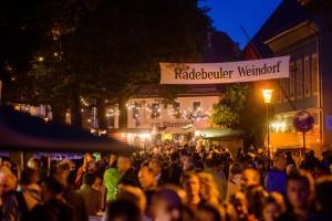 Weinfest Radebeul _Andre Wirsig