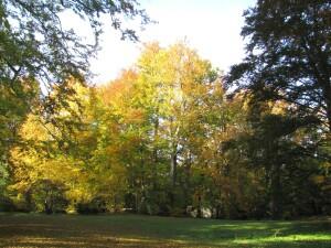 altzella-abbey-park-185219_1280