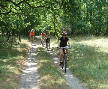 Ausflugstipp: Fahrrad & Bus