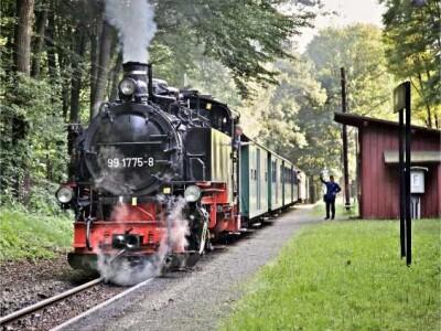 VVO_Loessnitztalbahn_Foto_Lars_Neumann